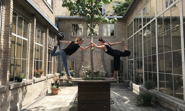 summer yoga v Operu